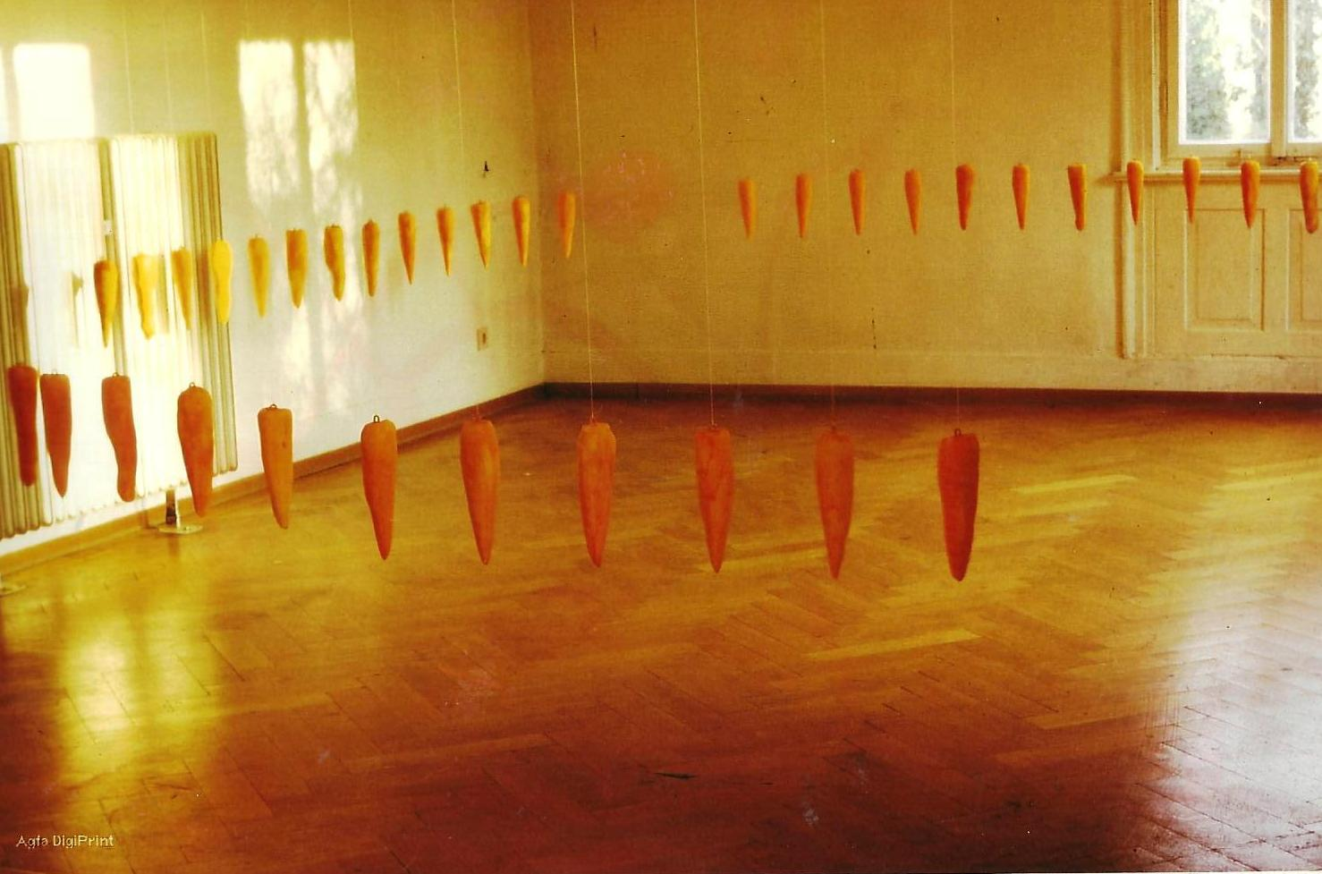 Möhreninstallation 1993
